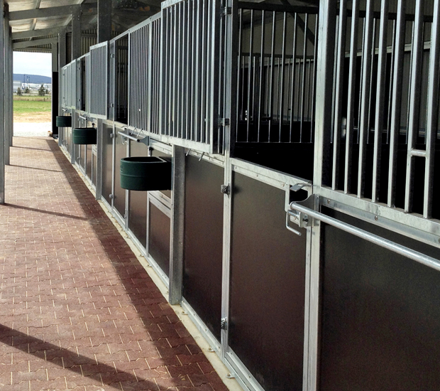 Stable stalls with swinging doors